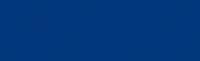 BCEGI Logo